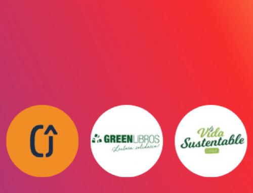 Algunas cuentas sostenibles que deberías seguir en Instagram