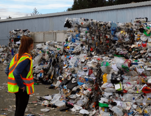 Nuevo estudio revela trabas legales que dificultan el reciclaje y compostaje domiciliario en Chile