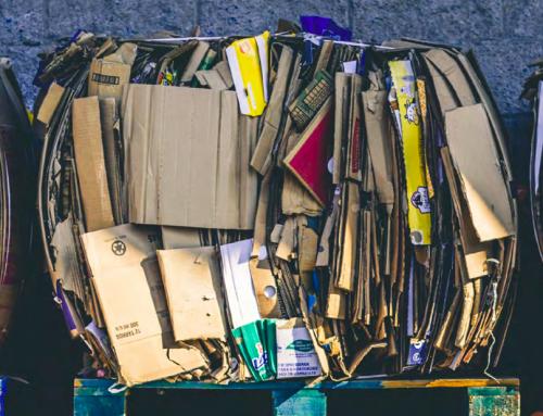 Webinar: Desafíos legales para fomentar el reciclaje y compostaje domiciliario en Chile